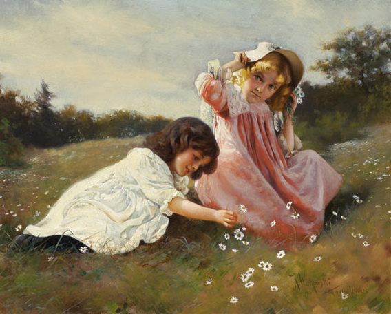 Gatheringdaisies