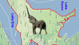 Cropped_elephant_in_ontario-ho