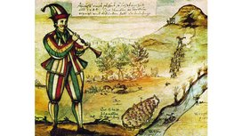 File_pied%20piper.jpg%20-%20wikimedia%20commons