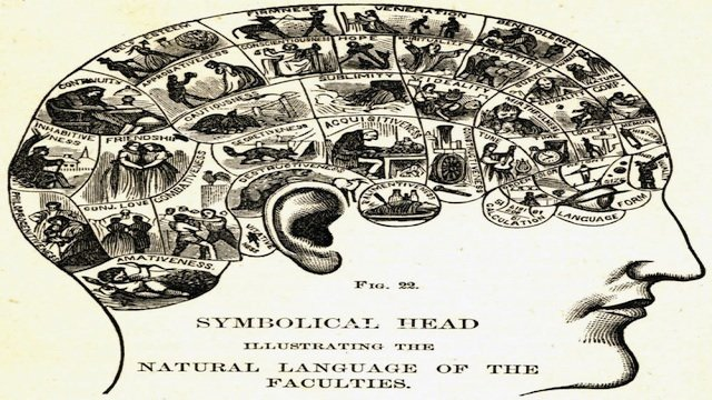 Phrenological_head