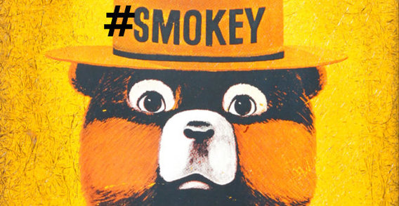 Bt_smokey_the_bear_final