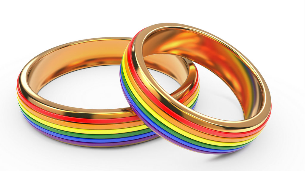 Gay And Lesbian Wedding Bands 31 Marvelous Article Image