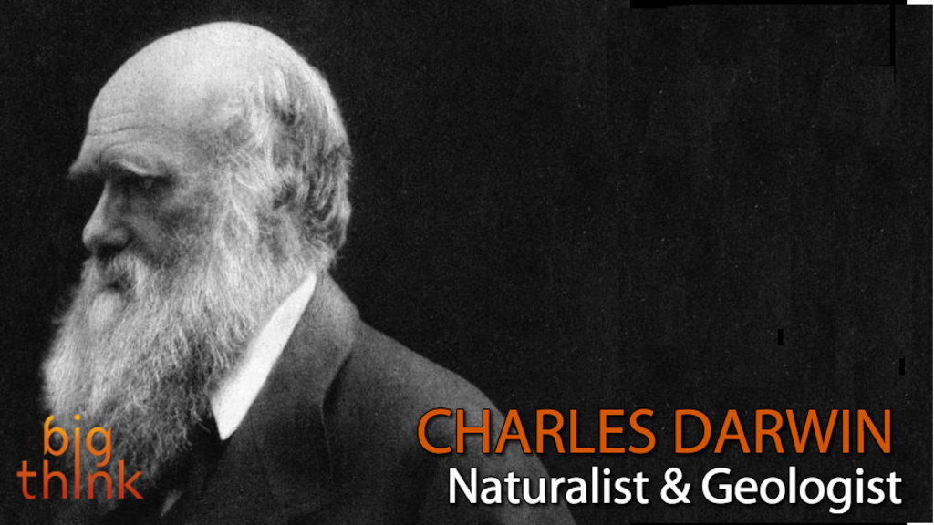 Who do you think is the best writer past or present on Darwin?