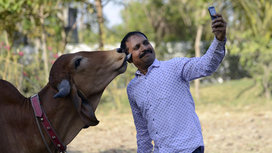 Selfie_with_cow_lick