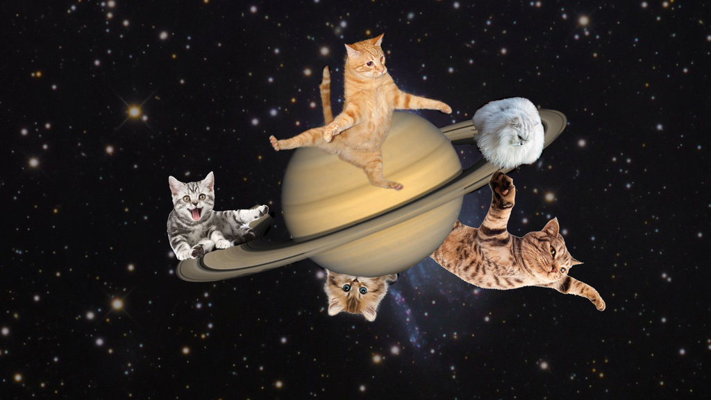 Nasa scientists are naming features of saturn after famous cats saturns rings are iconic but its far from the only planet to have them jupiter uranus and neptune all have rings theirs however arent as prominent thecheapjerseys Choice Image