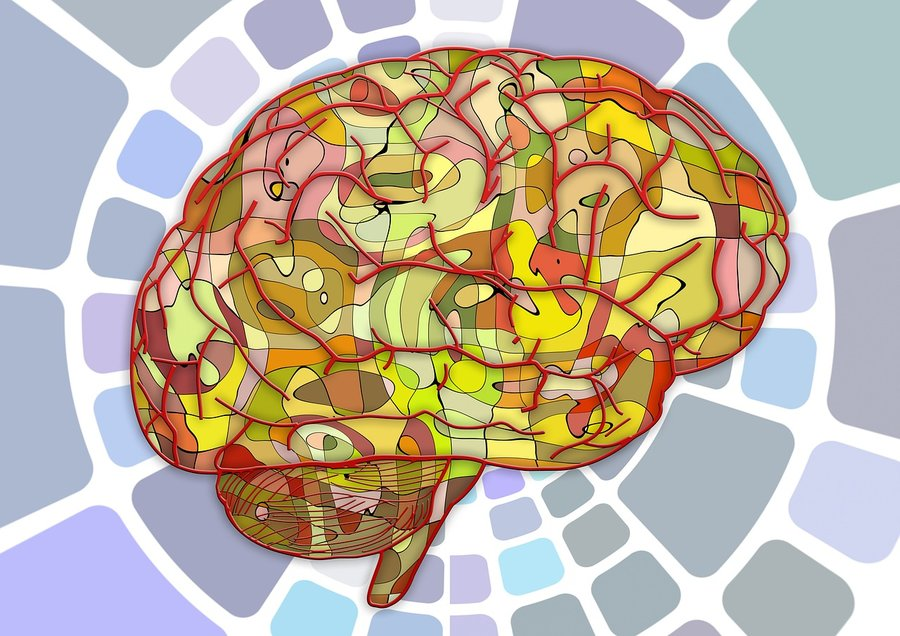 All languages speak syllables at about the same rate. Neuroscientists now know why