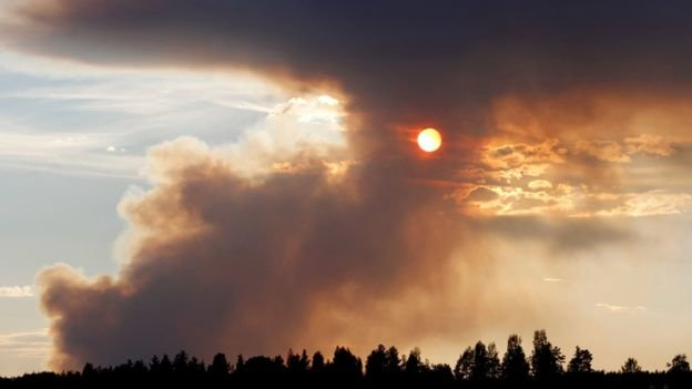 A dozen monthly wildfires in the Arctic Circle? That's the new reality of climate change