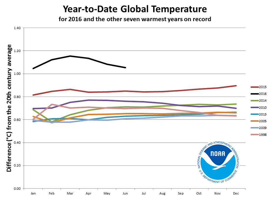 year to year global temperatures
