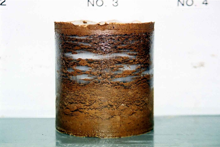 Frost heave in a soil sample