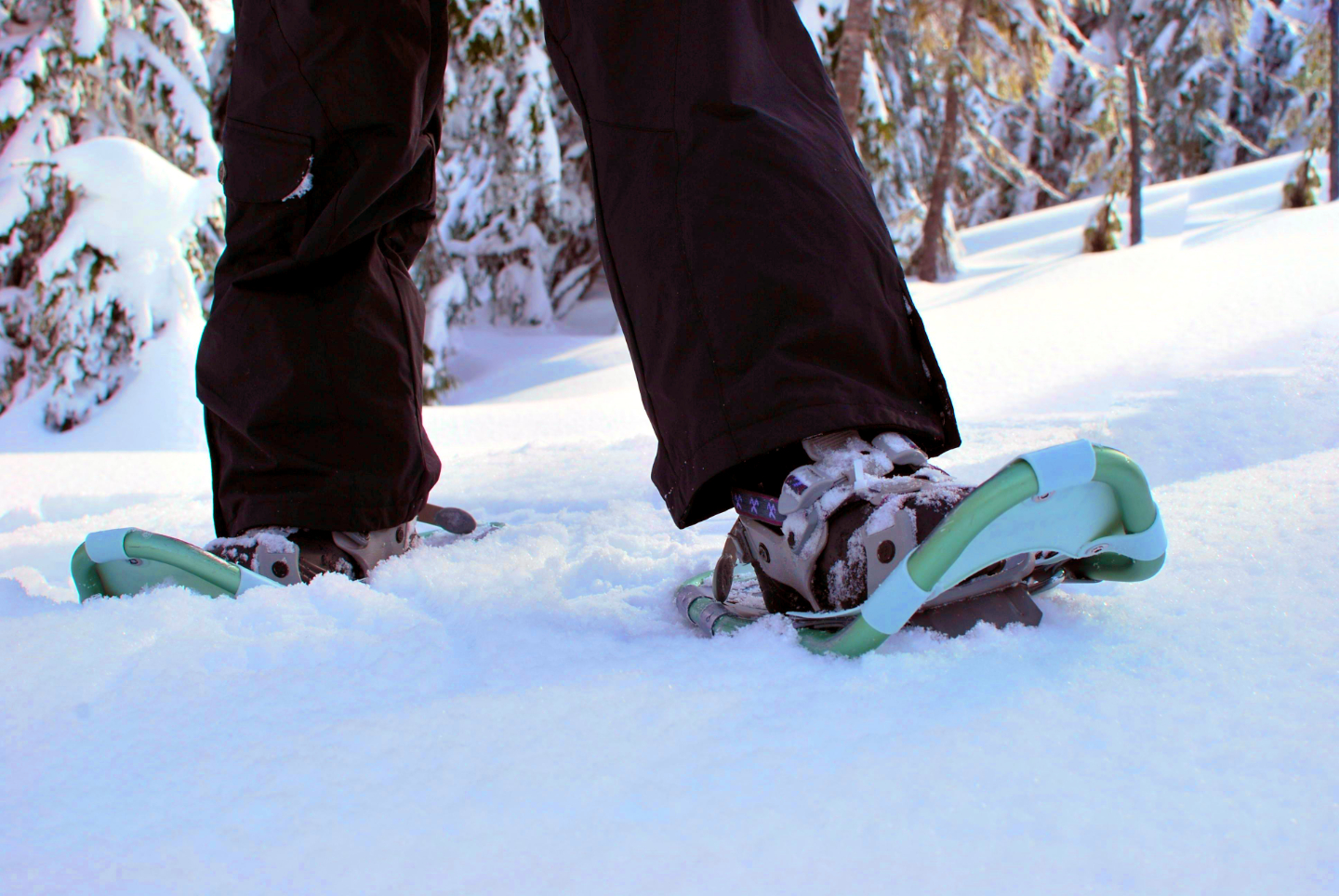 styling snowshoes